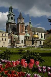 Wawel Cathedral (Krakow)