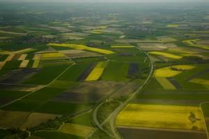 Fields in Germany